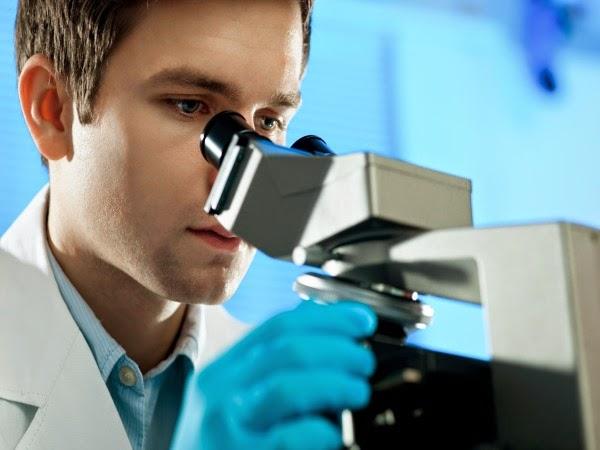 ¿Cómo se determina el riesgo de un cáncer de próstata y sus opciones de tratamiento?