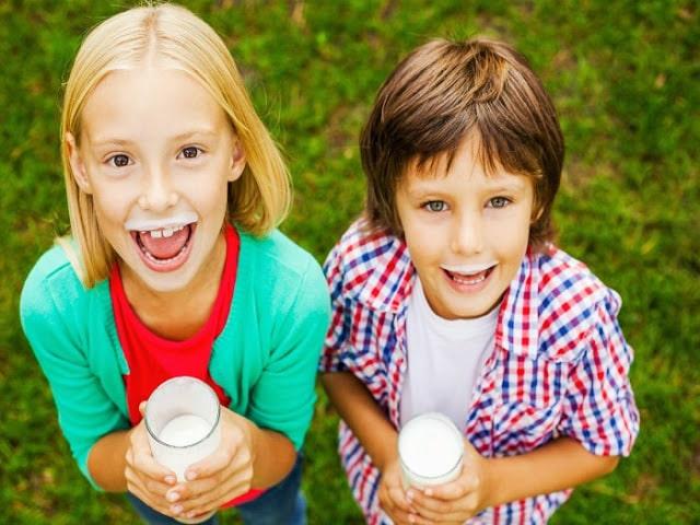 Alternativas a la leche de vaca para niños - Salud