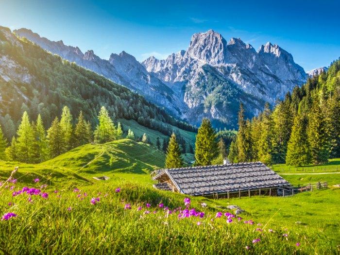 Los Alpes Suizos en Primavera (Euroresidentes)